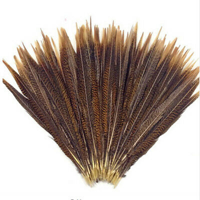 Wholesale 10-200pcs Natural Color Pheasant Tail Feathers 4-28 inches