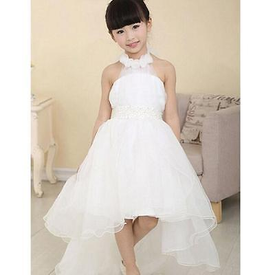 Flower Girl Princess Dress Kid Party Pageant Wedding Bridesmaid Tutu Dresses Hot