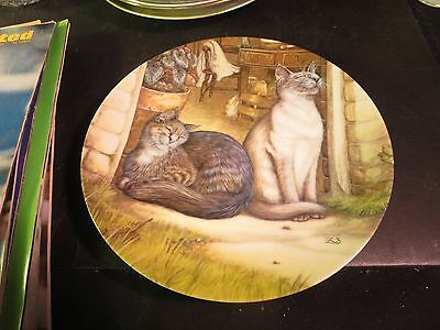 """American Artists 8-1/2"""" Collector's Plate 1985 """"Sunshine"""" Cats, Kittens"""
