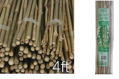 Pack of 100 Strong Bamboo Canes Garden  Fencing Flower Plant Support Canes 4 Ft