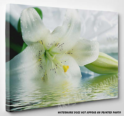 X LARGE STUNNING White Lily Flowers Picture Canvas Print Wall Art  A1 A2 A3