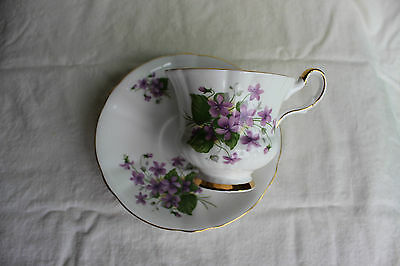 Windsor Violets Floral Cup and Saucer