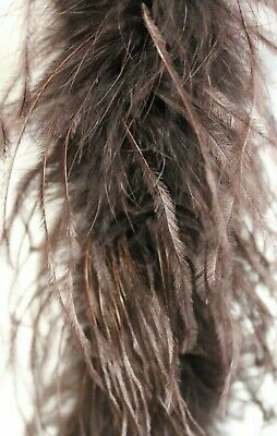 2 Ply OSTRICH FEATHER BOA - BROWN 2 Yards Costumes/Trim
