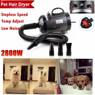 New 2800W Cat Dog Pet Hair Dryer Blaster Blower Heater Grooming Hairdryer