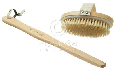 Hydrea Natural Bristle Body Brush with Long Detachable Handle WBH13