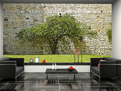Tree Against a Stone Wall Mural Photo Wallpaper GIANT DECOR Paper Poster