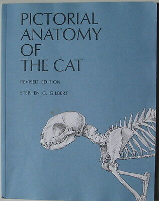 Cat Book  Pictorial Anatomy Of The Cat Revised Edition