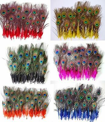DYED MINI PEACOCK TAIL FEATHERS 2-9 Inches Top Quality! Many Colors! Brand New!