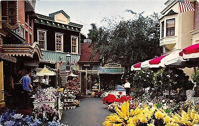 Disneyland Flower Mart Chrome Postcard