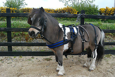 Webbing Driving Harness for Mini, Shetlands & small pony by Robert H Steinke