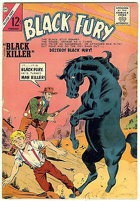 Black Fury #46 (Charlton 1964, fn-vf 7.0)
