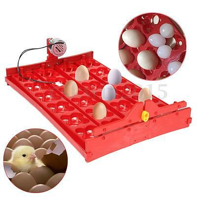 96 Quail Bird Eggs / 24 Chicken Eggs Tray for Poutry 220V Incubator AUTOMATIC