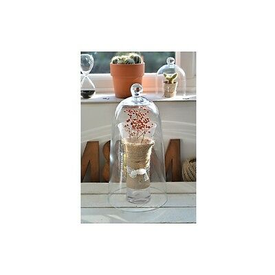 Large Mouth Blown Glass Display Cover Cloche Bell Dome Centrepiece 37.5 cm