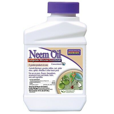 Bonide 024 Concentrate Neem Oil Insect Repellent 16-Ounce 1