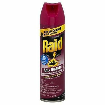Raid Ant & Roach Killer Insecticide Spray-Country Fresh-17.5 oz.