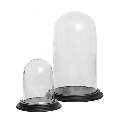 Glass Display Cover Dome Cloche With Wooden Base Set of 2 Danish Design