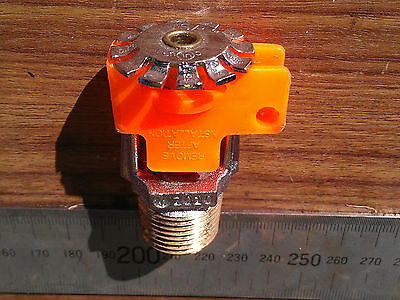 Tyco Brass Automatic Fire Sprinkler Head Stainless top SP Pendant Spray BSP 1/2""