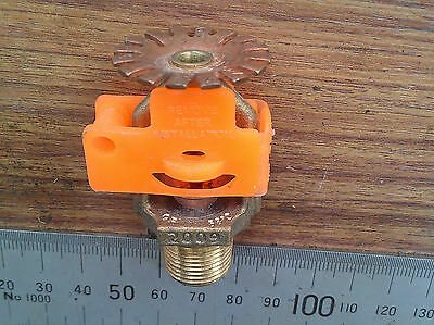 Tyco Brass Automatic Fire Sprinkler Head SSP Pendant Spray. 155F, 68C. BSP 3/8""
