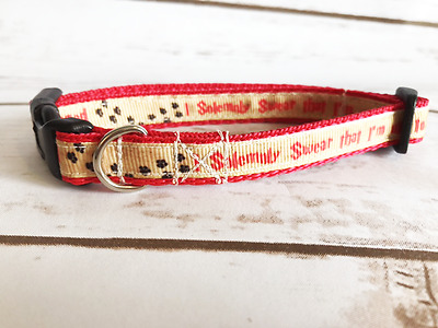 Mischief Managed I Solemnly Swear Harry Potter  Kitten Cat Puppy Dog Collar
