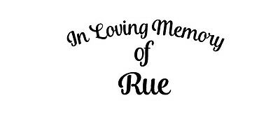 In Loving Memory of Rue The Hunger Games book dvd vinyl decal sticker