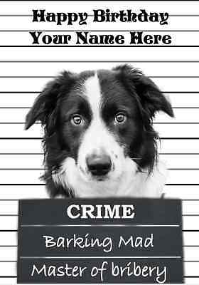 Border Collie PIDBOR2  All Occasions Personalised Greeting Card Birthday GIFTS