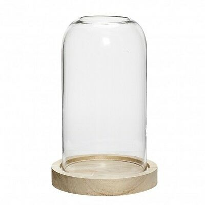 Small Glass Display Cover Dome Cloche With Hole Natural Wooden Base Danish Desig