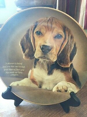 Cherished Beagles Danbury Mint Plate  Heart Of Gold D9983