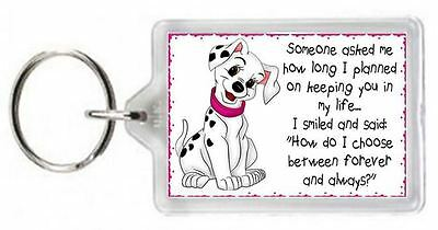101 Dalmatians Dog Pet Animal Always Love Forever Quote Saying Gift Novelty