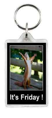 Squirel Animal Pet Pest Dance Excited Friday Bench Saying Gift Present Novelty