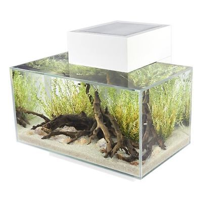 EDGE aquarium 23 L blanc brillant