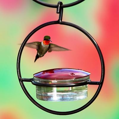 """7"""" Hanging Sphere Hummingbird Feeder Glass Birds By Couronne Co."""