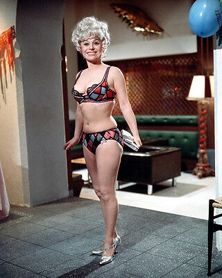 Barbara Windsor Carry on Abroad Great Underwear 10x8 Photo