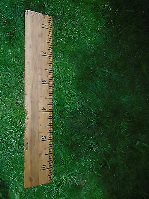 Giant height chart ruler 181cm christening gift man cave solid pine