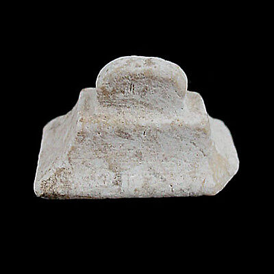 A Egyptian limestone amulet or seal. x8639