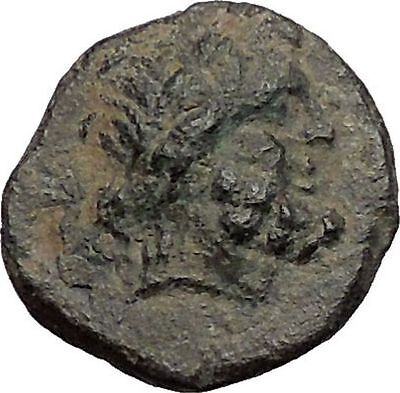 KOMANA in PISIDIA 1stCenBC Zeus Lion RARE Authentic Ancient Greek Coin i56235