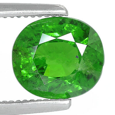 2.43Cts Natural Tsavorite Green Garnet From Africa Rare Color Gemstone Oval