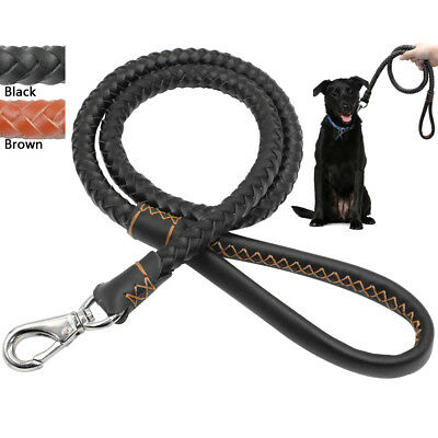 Genuine Braided Leather Dog Lead Pet Leash Durable for Medium Large Dogs 2 Sizes