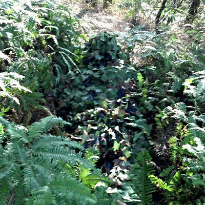 Outdoor Camouflage Clothing Sniper Paintball Hunting Ghillie Suit Jacket Pants
