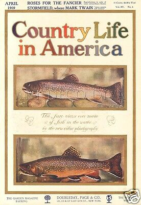 Antique 1909 Trout Fish Fishing Rainbow Color Photography Magazine Cover Art