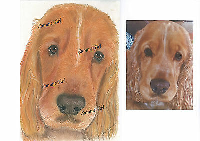 Pet Portrait - Custom       A4 Pastel Pencil