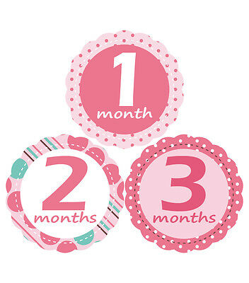 'MuchMore' Cute Monthly Baby Stickers Shower Gift Onesie Stickers Photo Prop