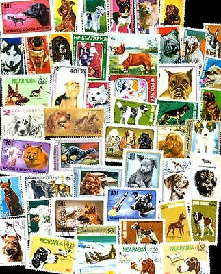 Collection of 47 Different DOG (DOGS)  Stamps