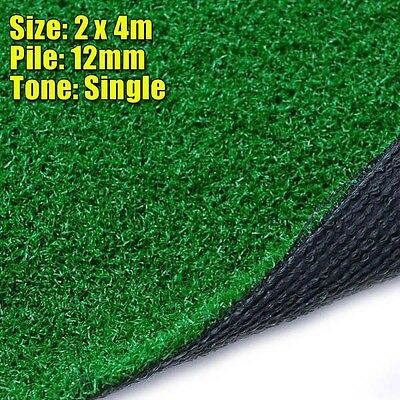 12mm Artificial Grass (2m x 4m)