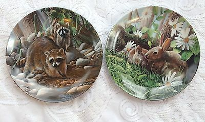 2 Encyclopaedia Britannica Friends Forest Collector Plates  Racoon/Rabbit 52
