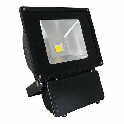 Classic IP65 Marine Graded Outdoor Security LED Floodlight Warm/Cool White Color