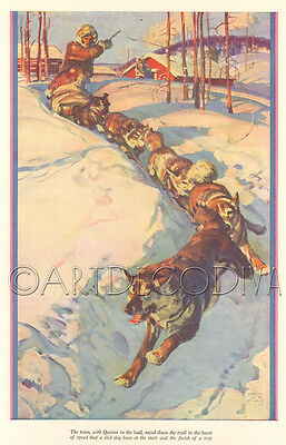 VTG 1930's Sled Dog Team Mushing ALASKA Malamute Husky IDITAROD Musher Art AD