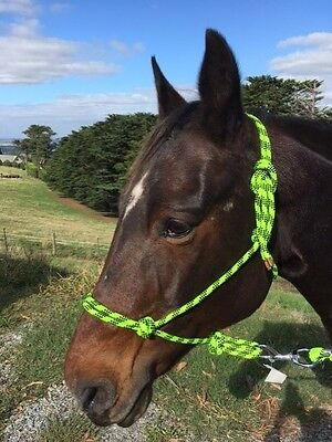 Rope Halter, Rope Headstall with 7ft lead.  Sizes Pony, Cob, Full. Fluoro Green