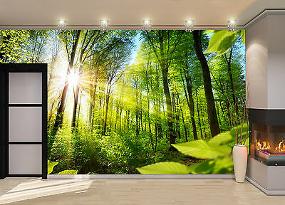 Sunlight ,Forest  Wall Mural Photo Wallpaper GIANT DECOR Paper Poster Free Paste