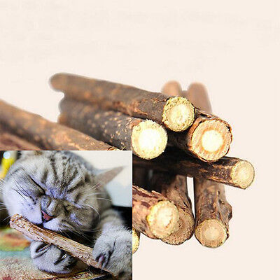Natural Molar Matatabi Toy Catnip Polygama Pet Cat Stick Treat 1 Bag 5PCS Chew