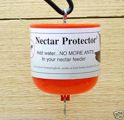Song Bird Essentials Hummingbird Feeder Ant Moat Nectar Protector Red SE611